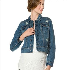 NWT- A Pea In The Pod Distressed Denim Jacket